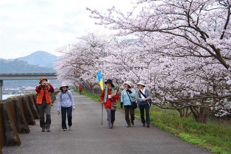 桜祭りウォークラリー