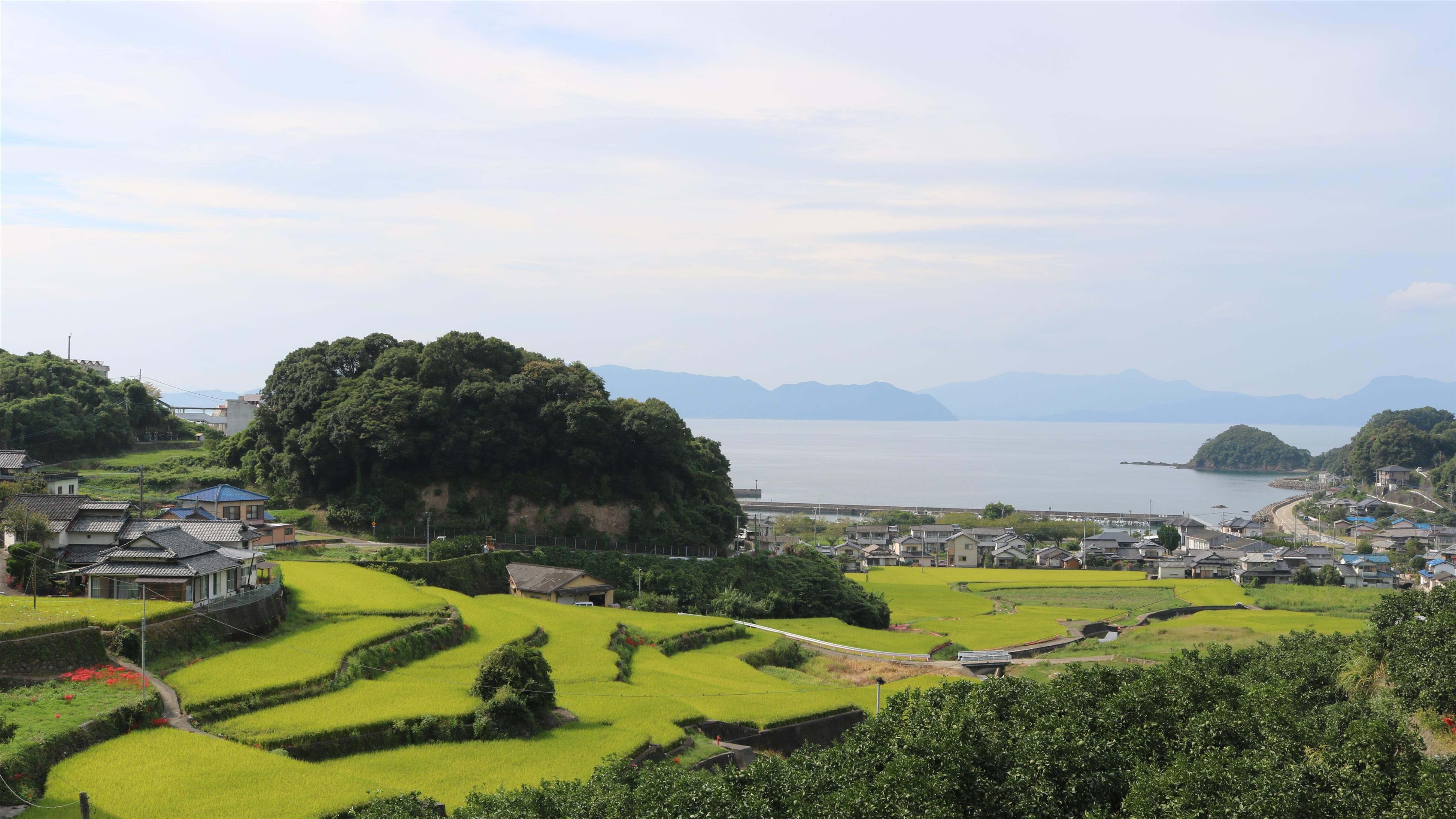 津奈木町の田園風景